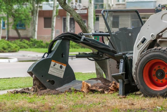 Stump Grinding Canberra