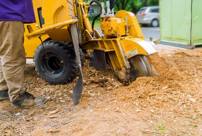 Stump Removal Canberra